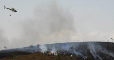 Governo inicia seleção de brigadistas para combate a incêndio. Inscrição vai até o dia 23
