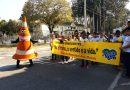 Escolas se mobilizam na Semana Nacional de Trânsito por mais segurança