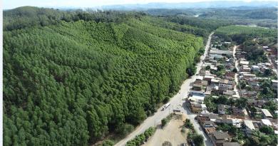Distrito de Perpétuo Socorro em Belo Oriente receberá Cinturão Verde